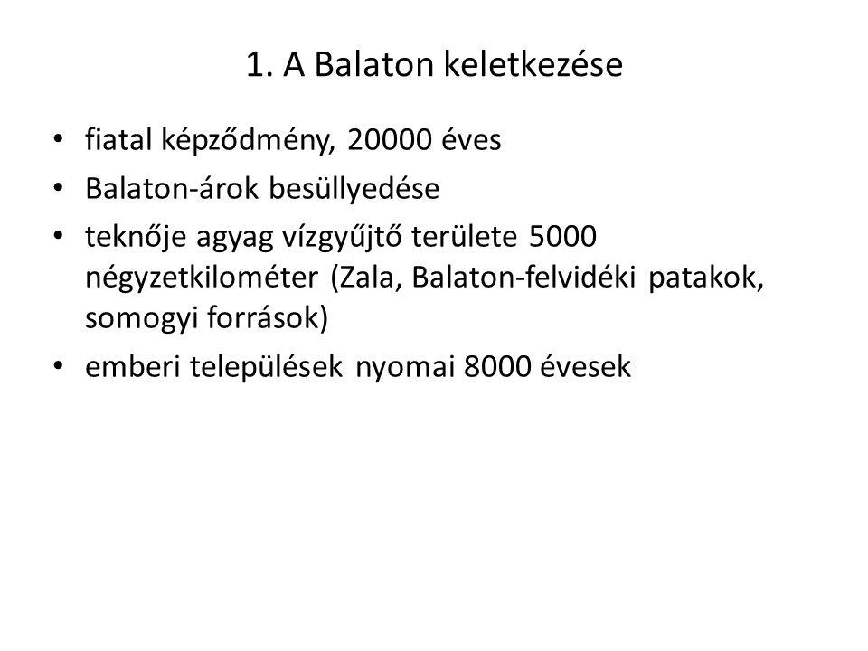 1. A Balaton keletkezése fiatal képződmény, 20000 éves Balaton-árok besüllyedése teknője agyag vízgyűjtő területe 5000 négyzetkilométer (Zala, Balaton