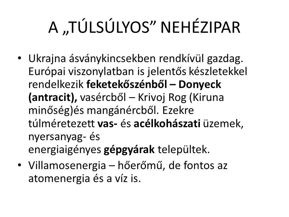 """A """"TÚLSÚLYOS NEHÉZIPAR Ukrajna ásványkincsekben rendkívül gazdag."""