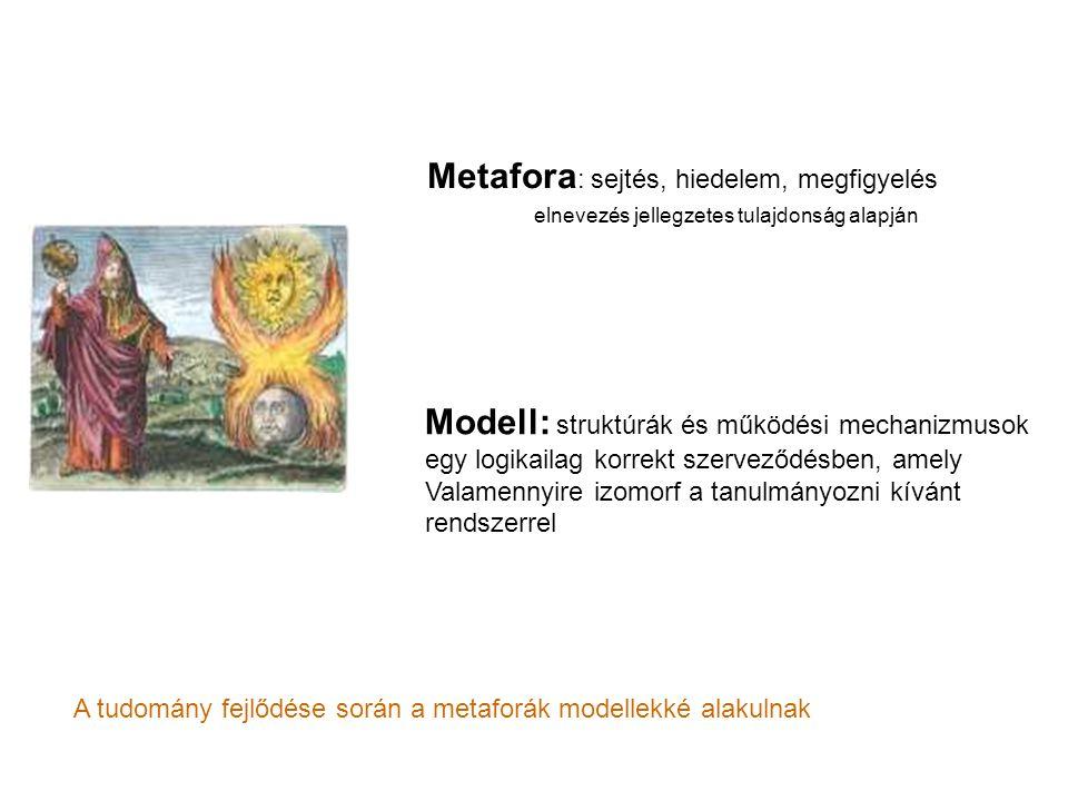 Metafora : sejtés, hiedelem, megfigyelés elnevezés jellegzetes tulajdonság alapján Modell: struktúrák és működési mechanizmusok egy logikailag korrekt