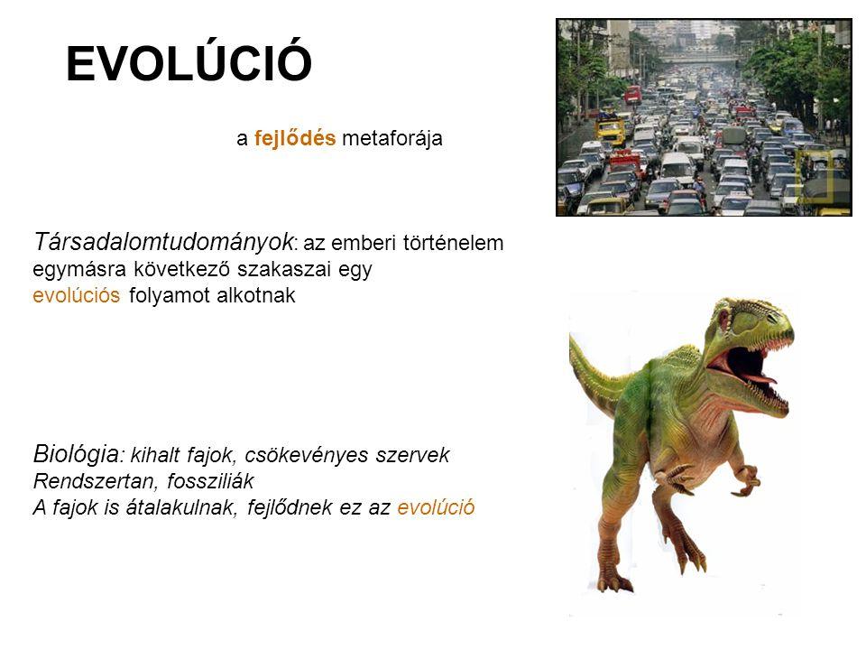 EVOLÚCIÓ a fejlődés metaforája Társadalomtudományok : az emberi történelem egymásra következő szakaszai egy evolúciós folyamot alkotnak Biológia : kih