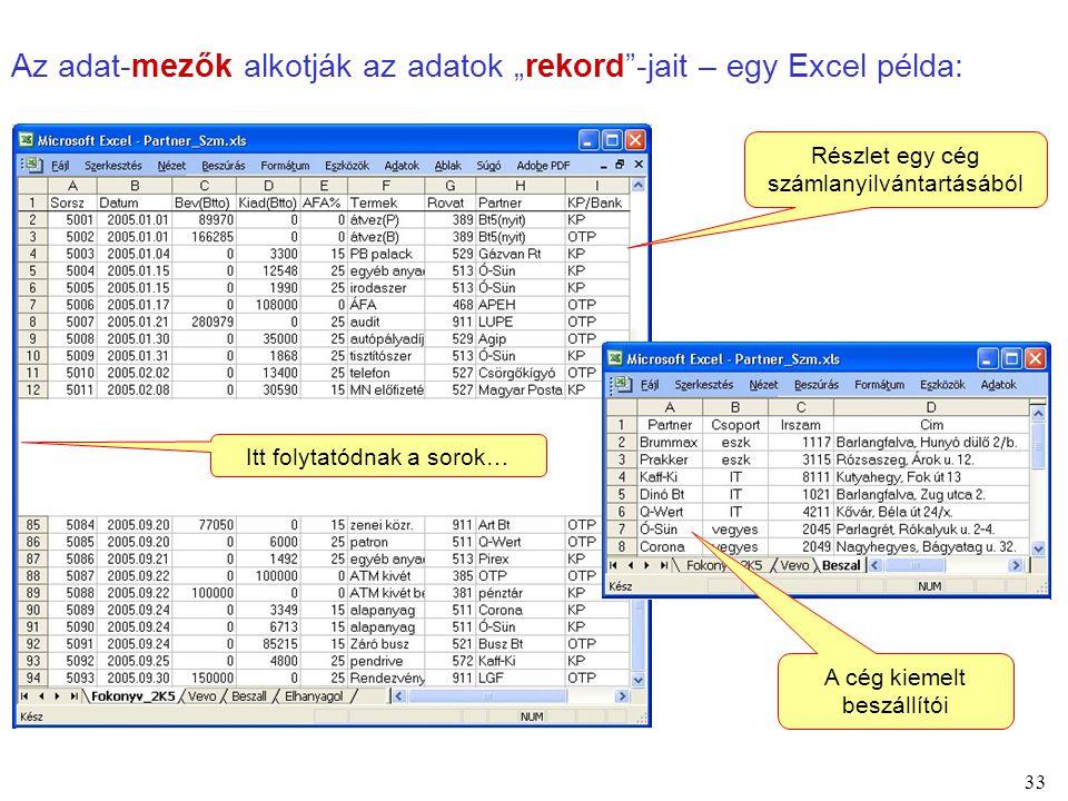 """33 Az adat-mezők alkotják az adatok """"rekord""""-jait – egy Excel példa: Itt folytatódnak a sorok… Részlet egy cég számlanyilvántartásából A cég kiemelt b"""