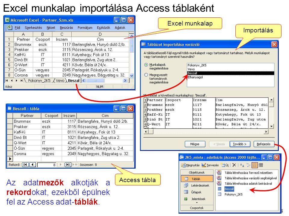 34 Az adatmezők alkotják a rekordokat, ezekből épülnek fel az Access adat-táblák. Excel munkalap importálása Access táblaként Excel munkalap Importálá