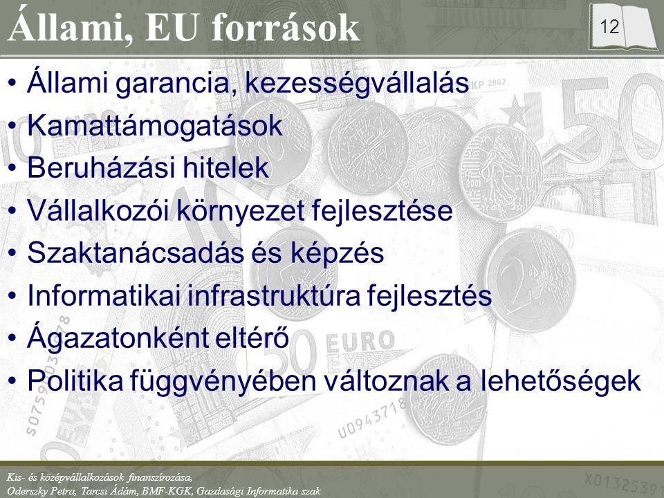 Kis- és középvállalkozások finanszírozása, Oderszky Petra, Tarcsi Ádám, BMF-KGK, Gazdasági Informatika szak 12 Állami, EU források Állami garancia, kezességvállalás Kamattámogatások Beruházási hitelek Vállalkozói környezet fejlesztése Szaktanácsadás és képzés Informatikai infrastruktúra fejlesztés Ágazatonként eltérő Politika függvényében változnak a lehetőségek