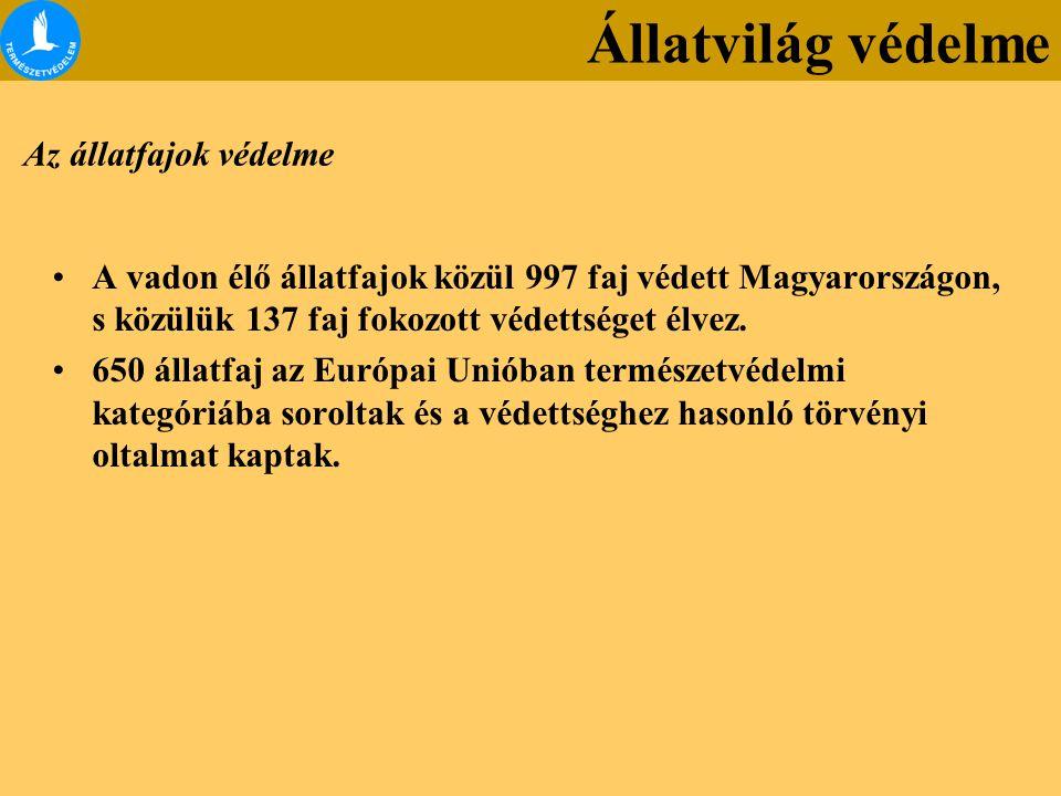 Az állatfajok védelme A vadon élő állatfajok közül 997 faj védett Magyarországon, s közülük 137 faj fokozott védettséget élvez. 650 állatfaj az Európa