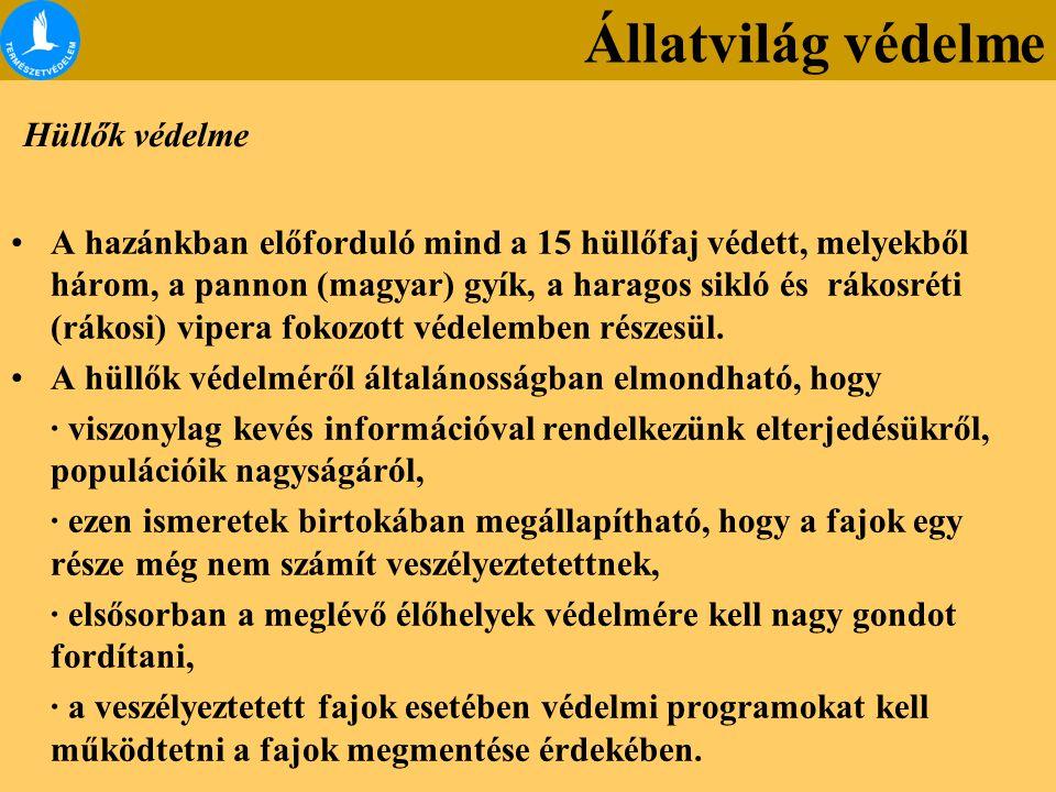 Hüllők védelme A hazánkban előforduló mind a 15 hüllőfaj védett, melyekből három, a pannon (magyar) gyík, a haragos sikló és rákosréti (rákosi) vipera