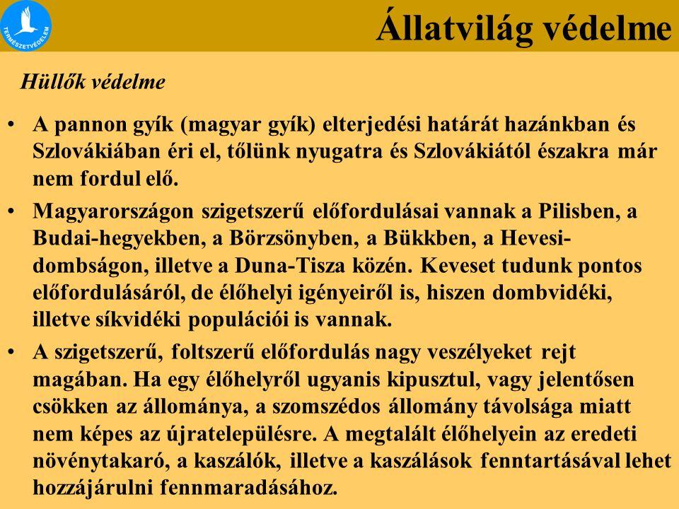 Hüllők védelme A pannon gyík (magyar gyík) elterjedési határát hazánkban és Szlovákiában éri el, tőlünk nyugatra és Szlovákiától északra már nem fordul elő.