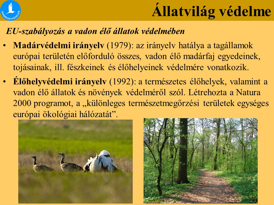 EU-szabályozás a vadon élő állatok védelmében Madárvédelmi irányelv (1979): az irányelv hatálya a tagállamok európai területén előforduló összes, vadon élő madárfaj egyedeinek, tojásainak, ill.