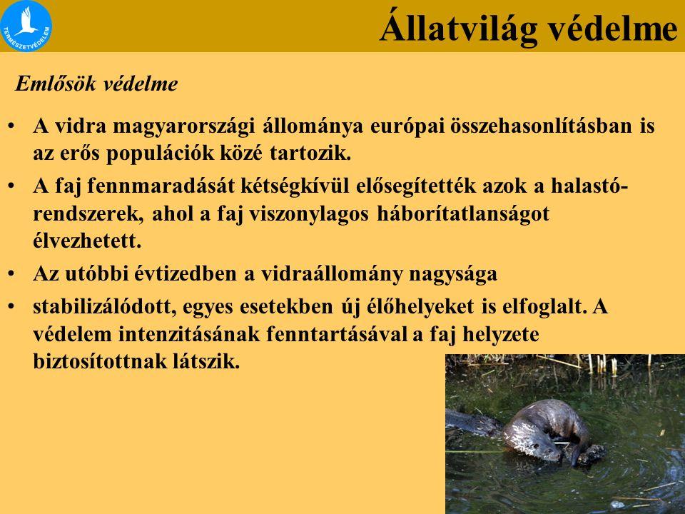A vidra magyarországi állománya európai összehasonlításban is az erős populációk közé tartozik. A faj fennmaradását kétségkívül elősegítették azok a h