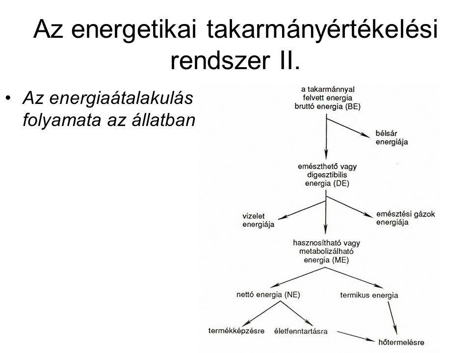 Az energetikai takarmányértékelési rendszer II. Az energiaátalakulás folyamata az állatban