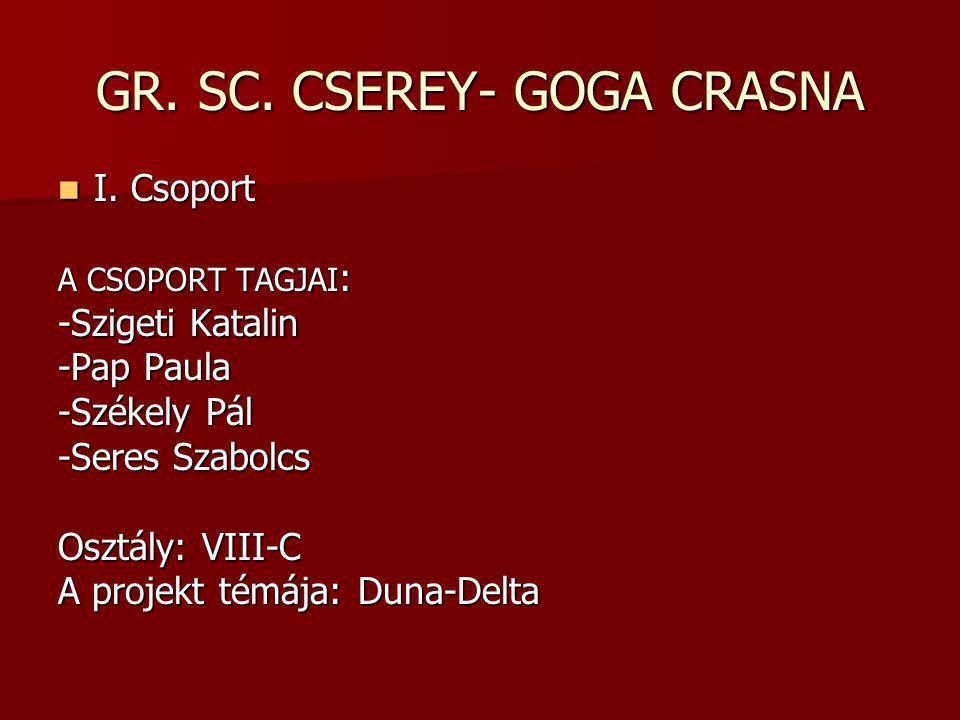 GR. SC. CSEREY- GOGA CRASNA I. Csoport I.