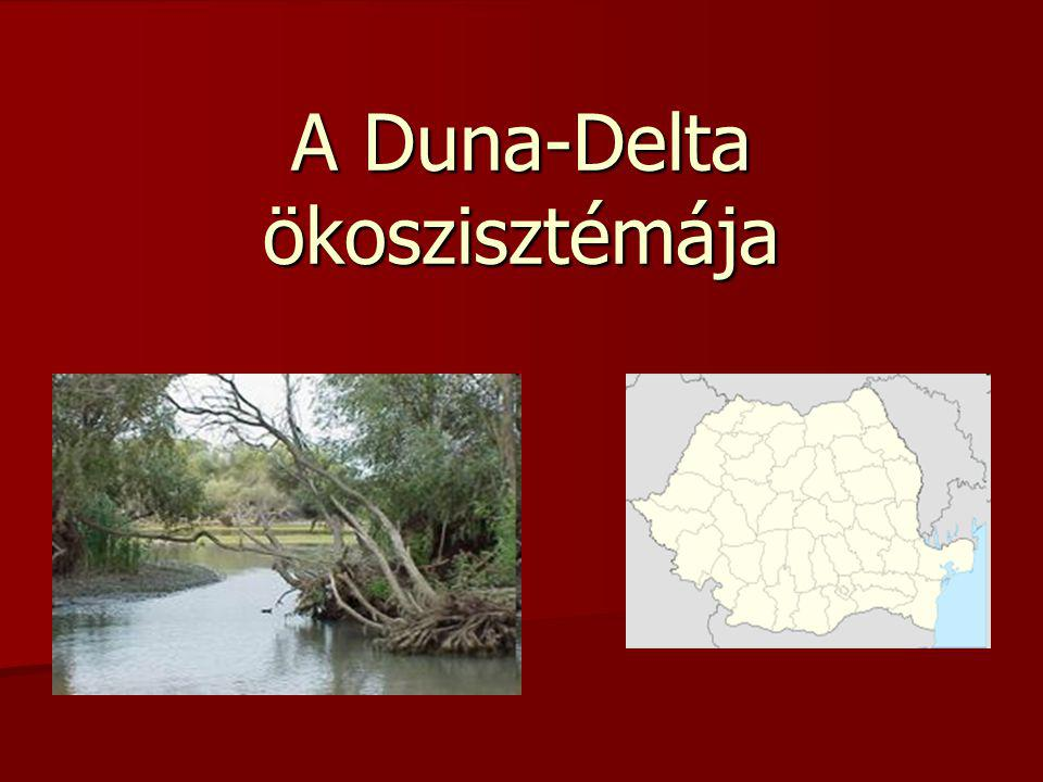 A Duna-Delta ökoszisztémája