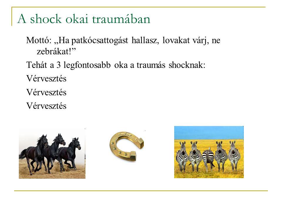 """A shock okai traumában Mottó: """"Ha patkócsattogást hallasz, lovakat várj, ne zebrákat!"""" Tehát a 3 legfontosabb oka a traumás shocknak: Vérvesztés"""