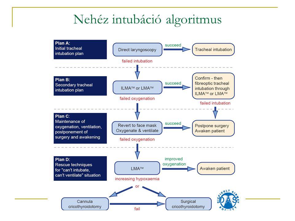Nehéz intubáció algoritmus