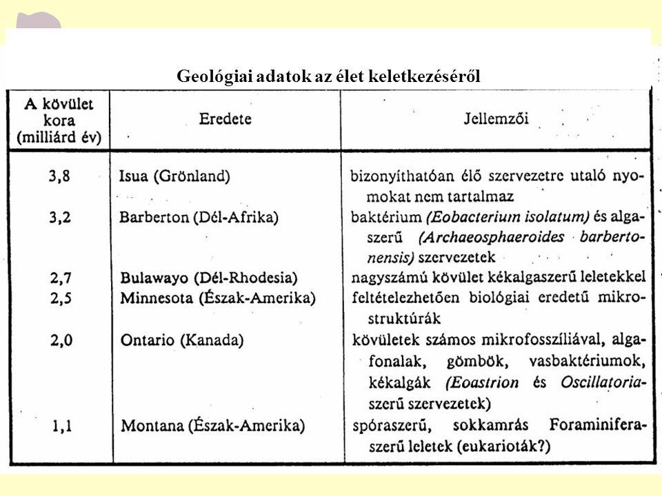 Geológiai adatok az élet keletkezéséről