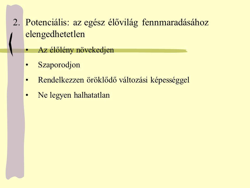 TulajdonságokProkariótákEukarióták sejtmagmembránnincsvan mitotikus orsónincsvan meiózisnincsvan kromoszómaszám12 vagy több replikációfolyamatosszakaszos mitokondriumnincsvan (nincs + ) kloroplasztisznincsvan (nincs ++ ) ostor, csilló (9+2 filament szerkezet) nincsvan (vagy nincs) endoplazmás hálózatnincsvan vakuólumoknincsvan (vagy nincs) Golgi-apparátusnincsvan fagocitózisnincsvan (vagy nincs) Az eukarióta és a prokarióta sejt jellemzői