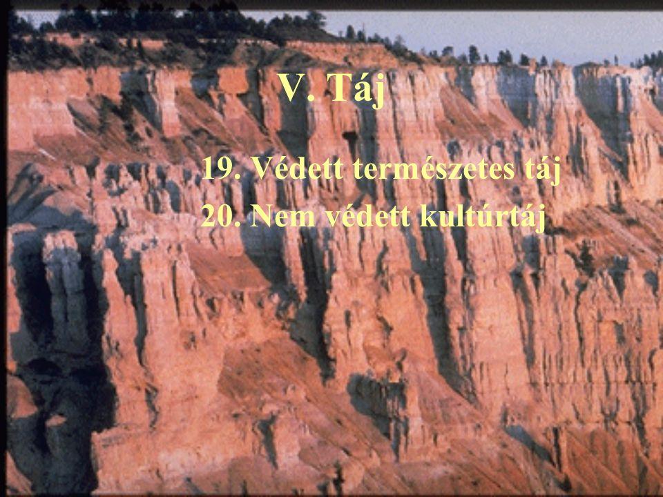 V. Táj 19. Védett természetes táj 20. Nem védett kultúrtáj
