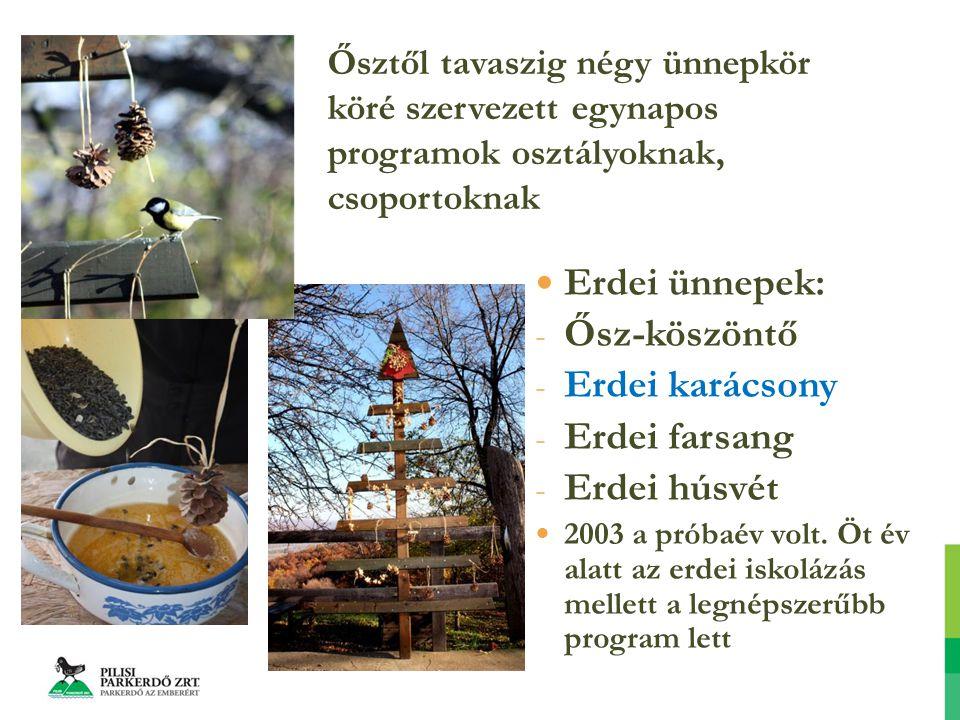 Erdei ünnepek: - Ősz-köszöntő - Erdei karácsony - Erdei farsang - Erdei húsvét 2003 a próbaév volt.