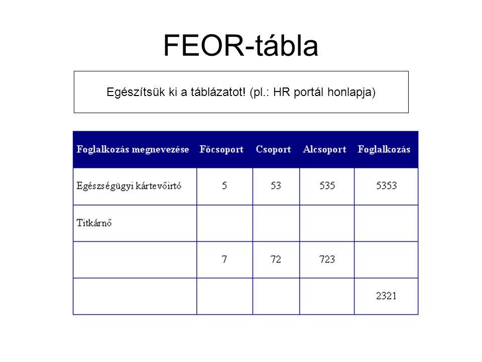 FEOR-tábla Egészítsük ki a táblázatot! (pl.: HR portál honlapja)