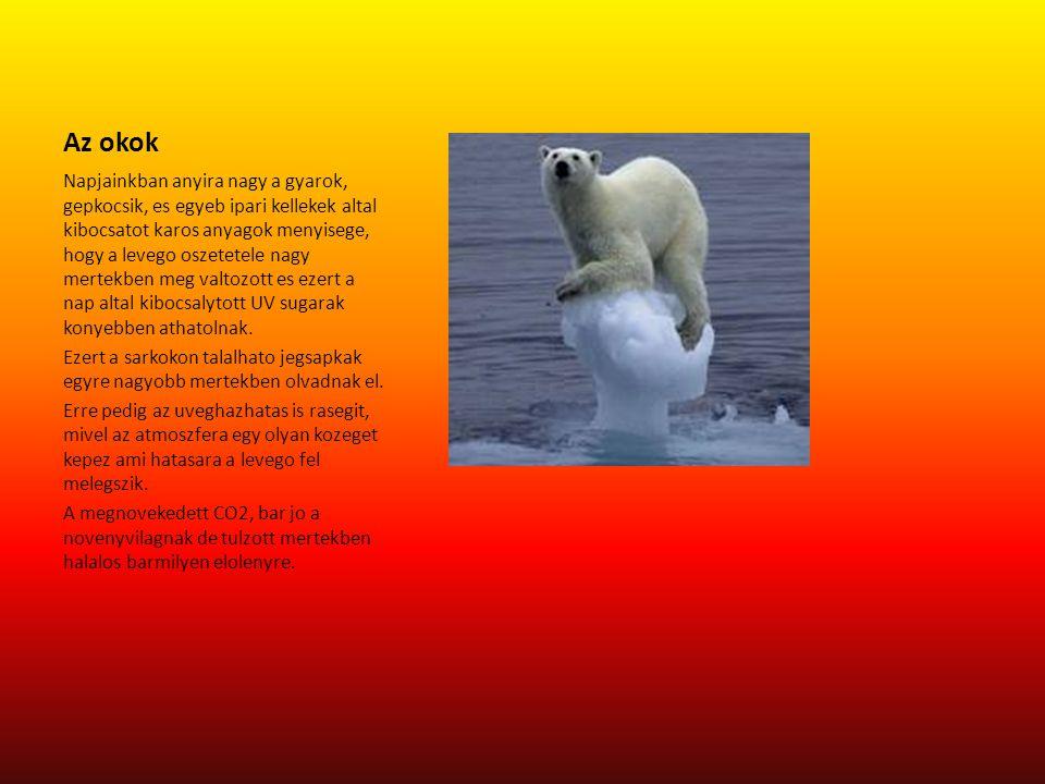 A kovetkezmenyek Az uveghazhatas az elovilag kihalasahoz vezet a drasztikus homerseklet valtozas es a nagy CO2 menyiseg miatt.