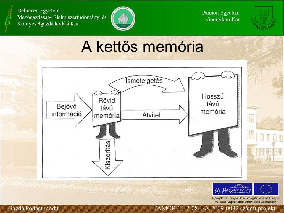 A kettős memória