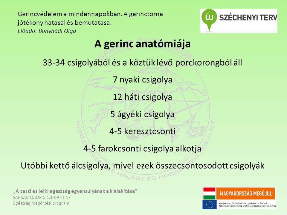 """A gerinc anatómiája 33-34 csigolyából és a köztük lévő porckorongból áll 7 nyaki csigolya 12 háti csigolya 5 ágyéki csigolya 4-5 keresztcsonti 4-5 farokcsonti csigolya alkotja Utóbbi kettő álcsigolya, mivel ezek összecsontosodott csigolyák """"A testi és lelki egészség egyensúlyának a kialakítása SARKAD-DAOP-5.1.1-09-2f-17 Egészség megőrzési program Gerincvédelem a mindennapokban."""
