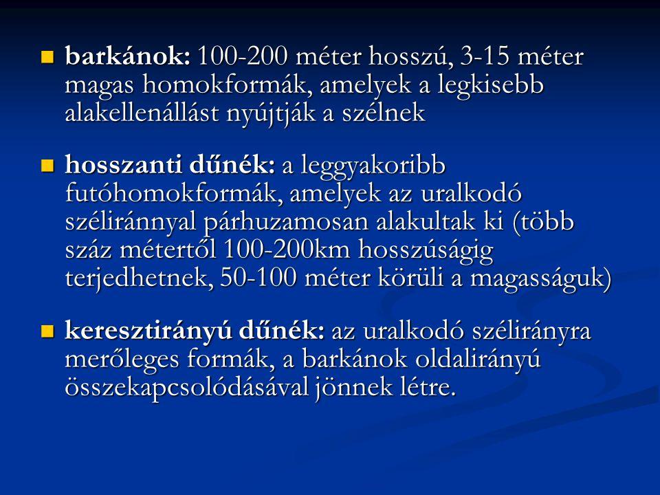 barkánok: 100-200 méter hosszú, 3-15 méter magas homokformák, amelyek a legkisebb alakellenállást nyújtják a szélnek barkánok: 100-200 méter hosszú, 3-15 méter magas homokformák, amelyek a legkisebb alakellenállást nyújtják a szélnek hosszanti dűnék: a leggyakoribb futóhomokformák, amelyek az uralkodó széliránnyal párhuzamosan alakultak ki (több száz métertől 100-200km hosszúságig terjedhetnek, 50-100 méter körüli a magasságuk) hosszanti dűnék: a leggyakoribb futóhomokformák, amelyek az uralkodó széliránnyal párhuzamosan alakultak ki (több száz métertől 100-200km hosszúságig terjedhetnek, 50-100 méter körüli a magasságuk) keresztirányú dűnék: az uralkodó szélirányra merőleges formák, a barkánok oldalirányú összekapcsolódásával jönnek létre.