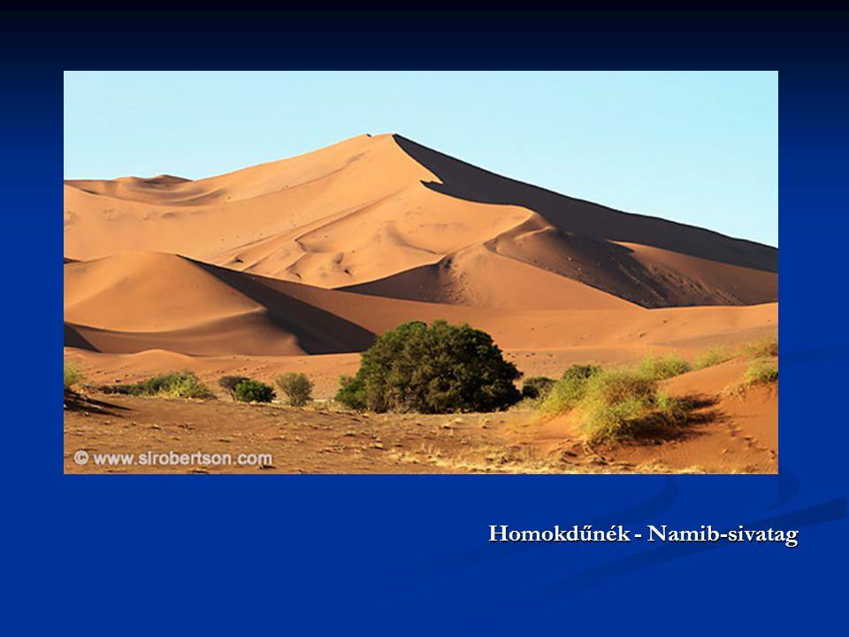 Homokdűnék - Namib-sivatag Homokdűnék - Namib-sivatag