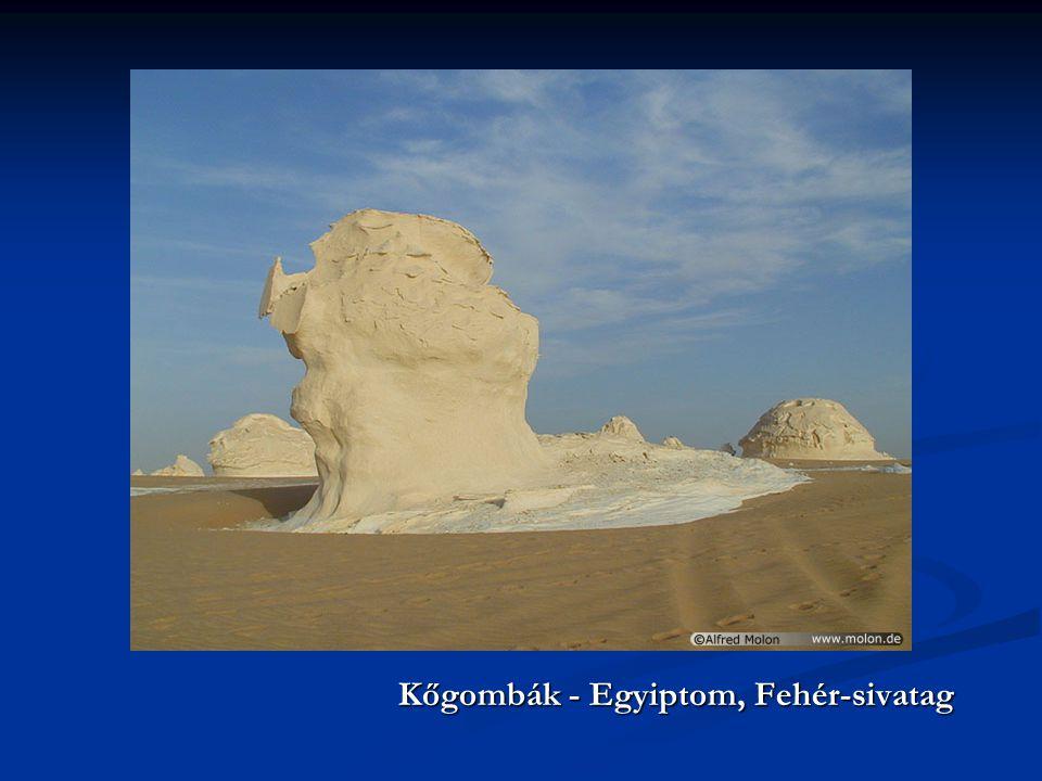 Kőgombák - Egyiptom, Fehér-sivatag Kőgombák - Egyiptom, Fehér-sivatag