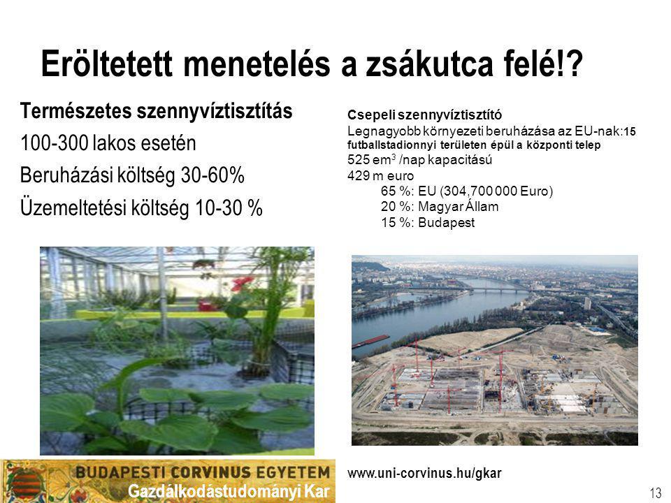 Gazdálkodástudományi Kar www.uni-corvinus.hu/gkar 13 Eröltetett menetelés a zsákutca felé!? Természetes szennyvíztisztítás 100-300 lakos esetén Beruhá