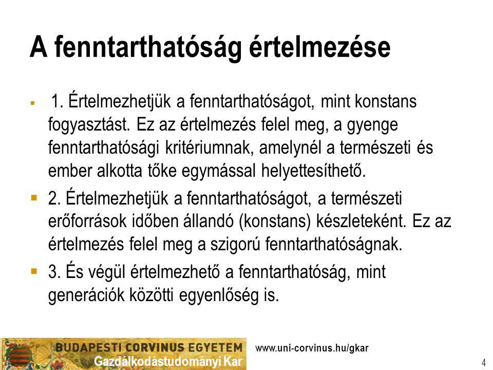Gazdálkodástudományi Kar www.uni-corvinus.hu/gkar 4 A fenntarthatóság értelmezése  1. Értelmezhetjük a fenntarthatóságot, mint konstans fogyasztást.