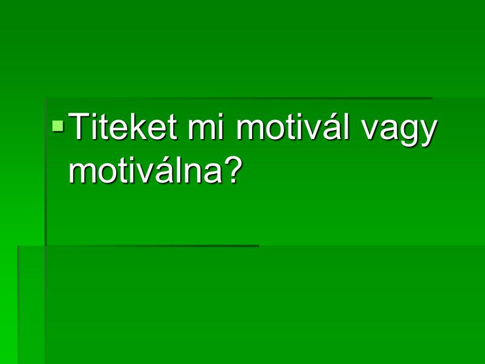  Titeket mi motivál vagy motiválna?