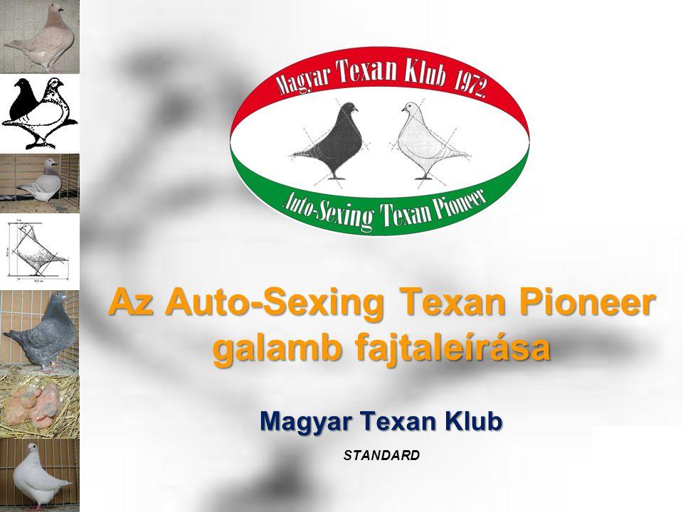 Magyar Texan Klub STANDARD Az Auto-Sexing Texan Pioneer galamb fajtaleírása