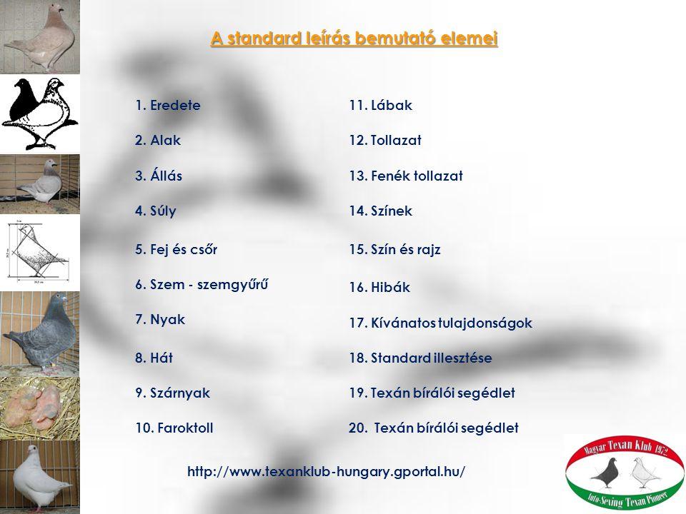 1. Eredete 2. Alak 3. Állás 4. Súly 5. Fej és csőr 6. Szem - szemgyűrű 7. Nyak 8. Hát 9. Szárnyak 10. Faroktoll A standard leírás bemutató elemei 11.