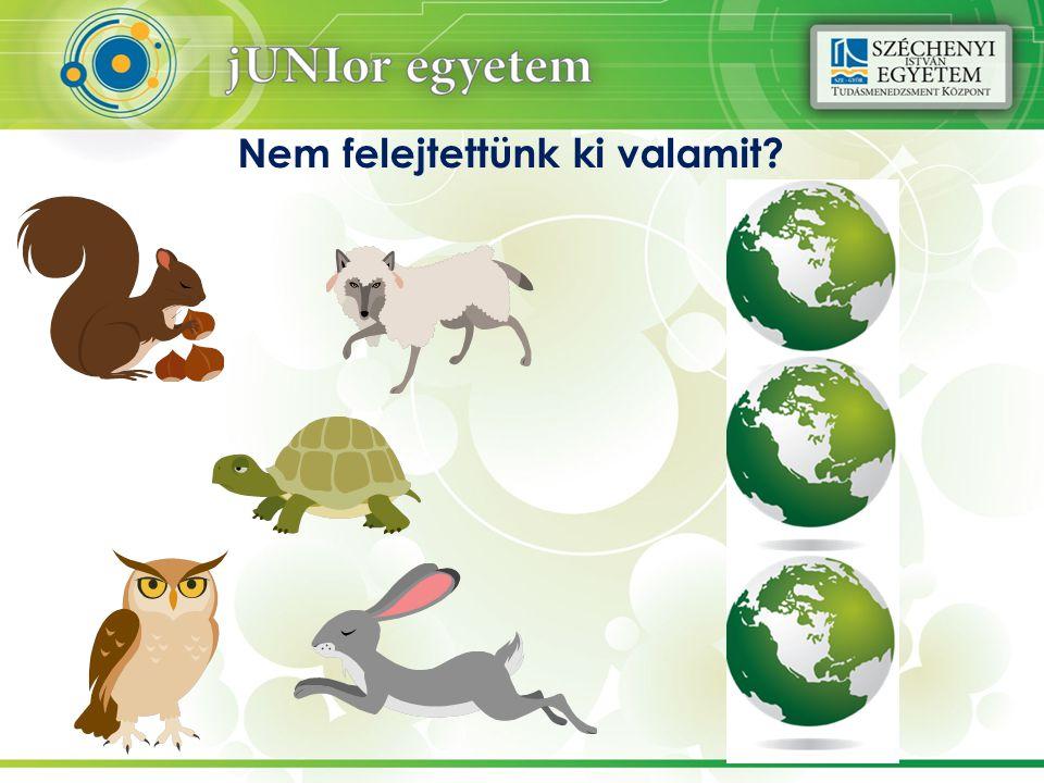 Miben egyedi az OPEV ökológiai lábnyomának számítása.