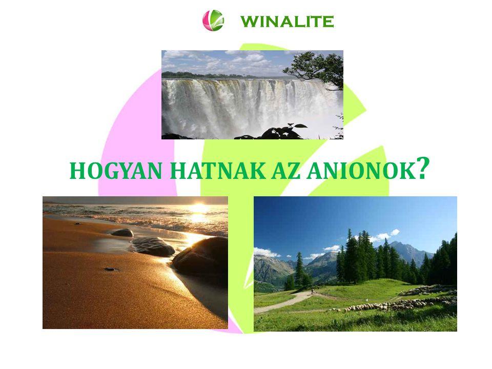 HOGYAN HATNAK AZ ANIONOK WINALITE