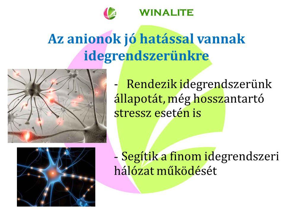 Az anionok jó hatással vannak idegrendszerünkre WINALITE - Rendezik idegrendszerünk állapotát, még hosszantartó stressz esetén is - Segítik a finom idegrendszeri hálózat működését