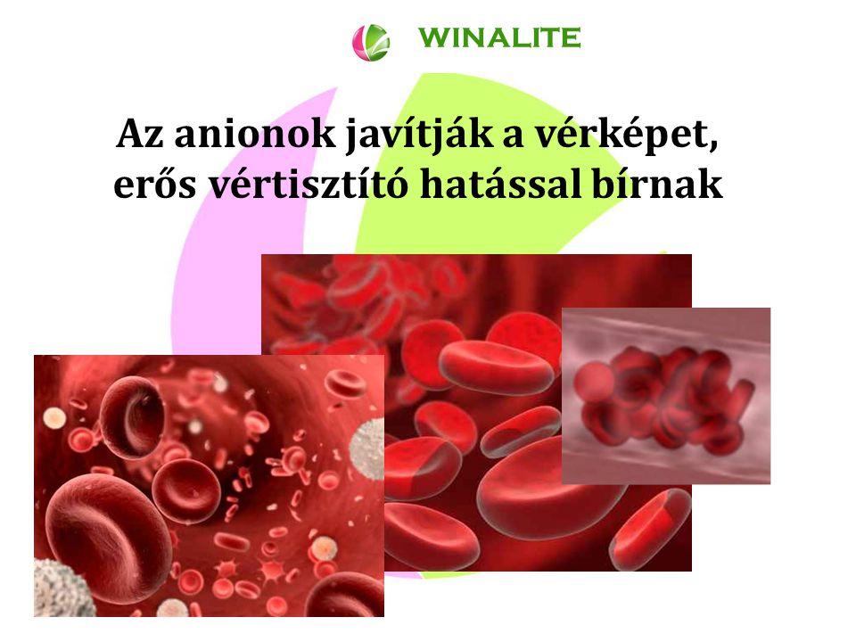 Az anionok javítják a vérképet, erős vértisztító hatással bírnak WINALITE