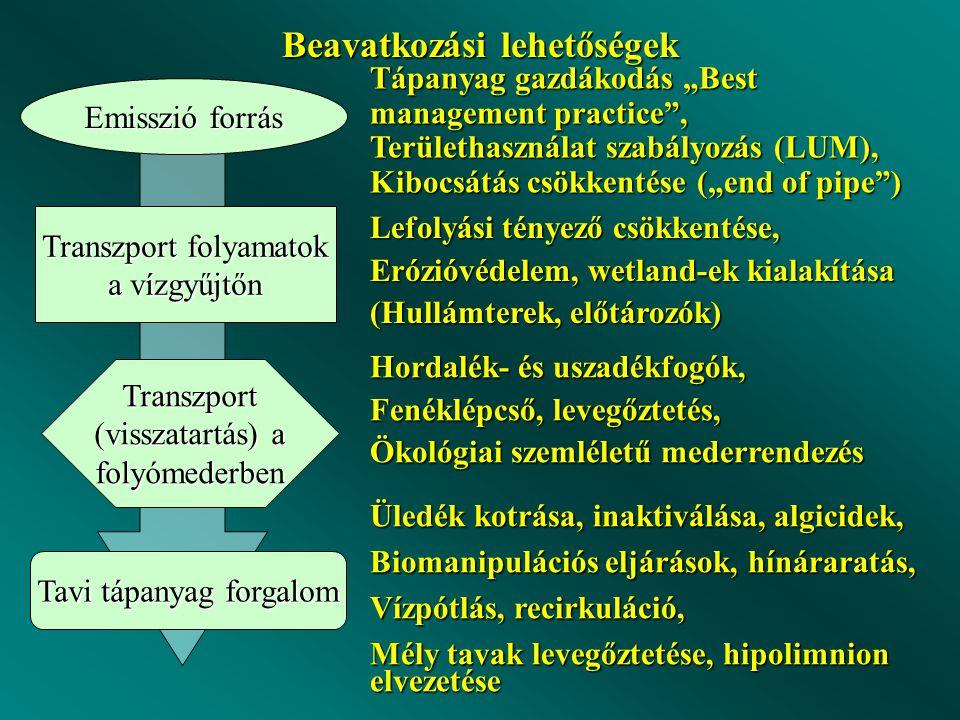 """Beavatkozási lehetőségek Emisszió forrás Transzport folyamatok a vízgyűjtőn Transzport (visszatartás) a folyómederben Tavi tápanyag forgalom Tápanyag gazdákodás """"Best management practice , Területhasználat szabályozás (LUM), Kibocsátás csökkentése (""""end of pipe ) Lefolyási tényező csökkentése, Erózióvédelem, wetland-ek kialakítása (Hullámterek, előtározók) Hordalék- és uszadékfogók, Fenéklépcső, levegőztetés, Ökológiai szemléletű mederrendezés Üledék kotrása, inaktiválása, algicidek, Biomanipulációs eljárások, hínáraratás, Vízpótlás, recirkuláció, Mély tavak levegőztetése, hipolimnion elvezetése"""