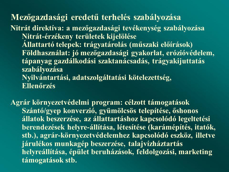 """A Nemzeti Települési Szennyvíz-elvezetési és -tisztítási Megvalósítási Program (""""A program"""": 25/2002. (II. 27.) Korm. Rendelet, """"B program"""": 174/2003."""