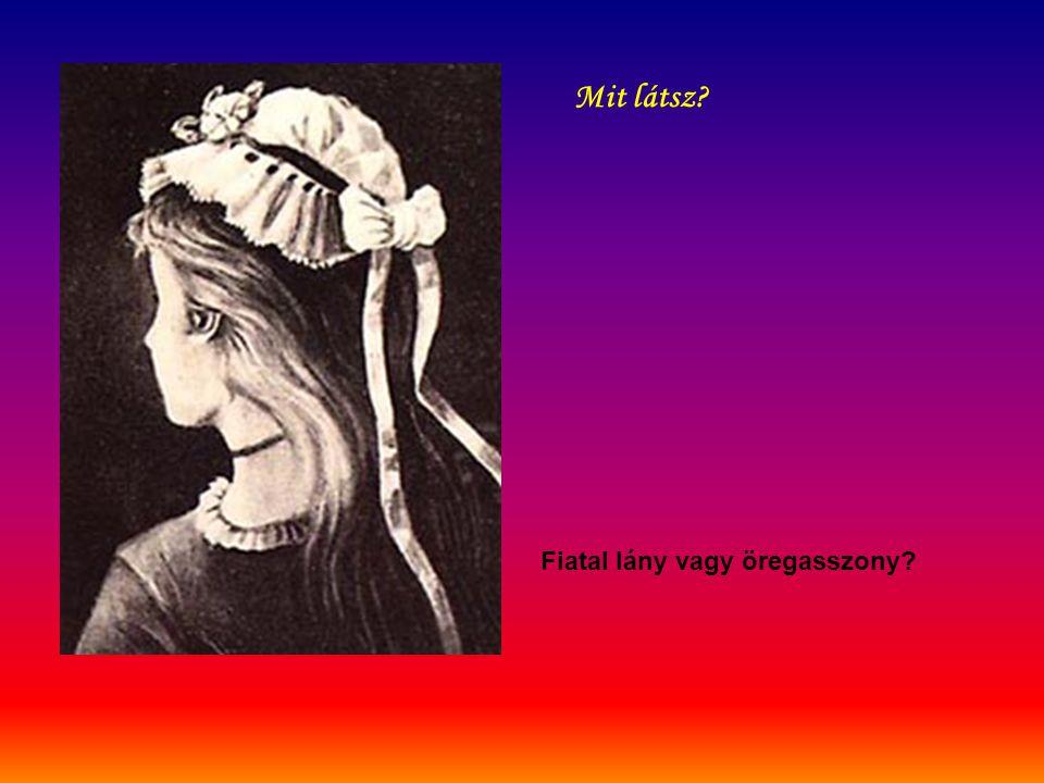 Fiatal lány vagy öregasszony? Mit látsz?