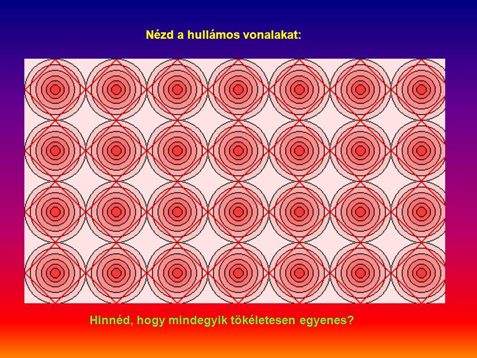 Nézd a hullámos vonalakat: Hinnéd, hogy mindegyik tökéletesen egyenes?