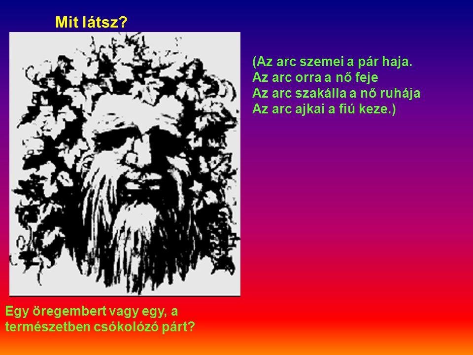 Mit látsz? Egy öregembert vagy egy, a természetben csókolózó párt? (Az arc szemei a pár haja. Az arc orra a nő feje Az arc szakálla a nő ruhája Az arc