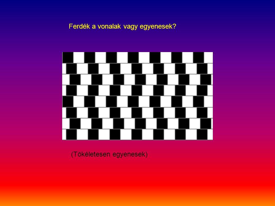 Ferdék a vonalak vagy egyenesek? (Tökéletesen egyenesek)