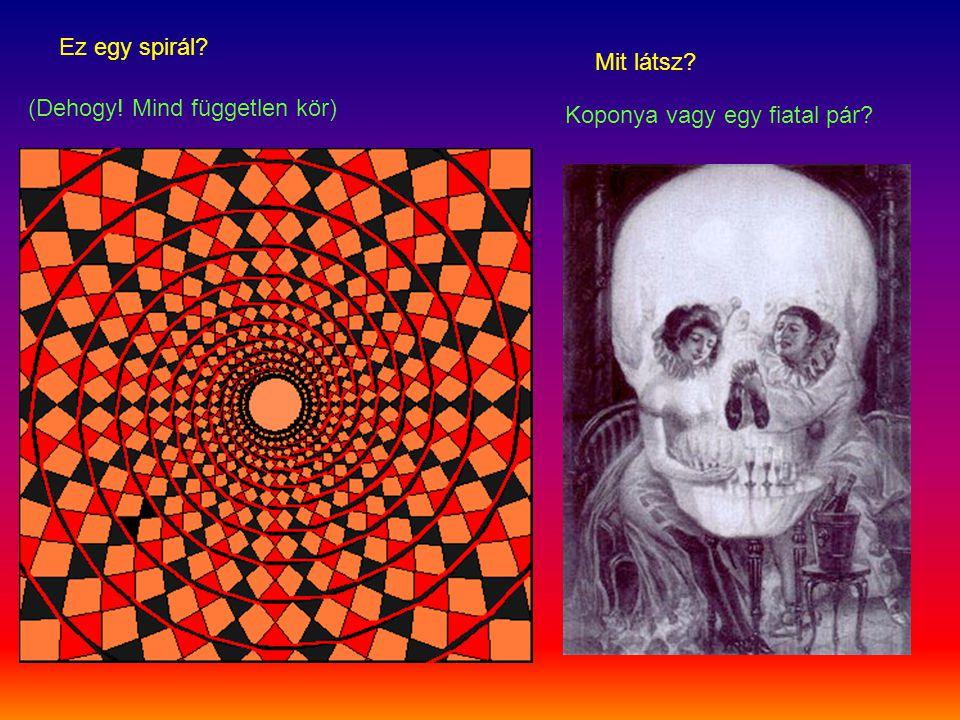 Ez egy spirál? (Dehogy! Mind független kör) Mit látsz? Koponya vagy egy fiatal pár?