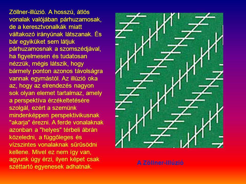 Zöllner-illúzió. A hosszú, átlós vonalak valójában párhuzamosak, de a keresztvonalkák miatt váltakozó irányúnak látszanak. És bár egyiküket sem látjuk