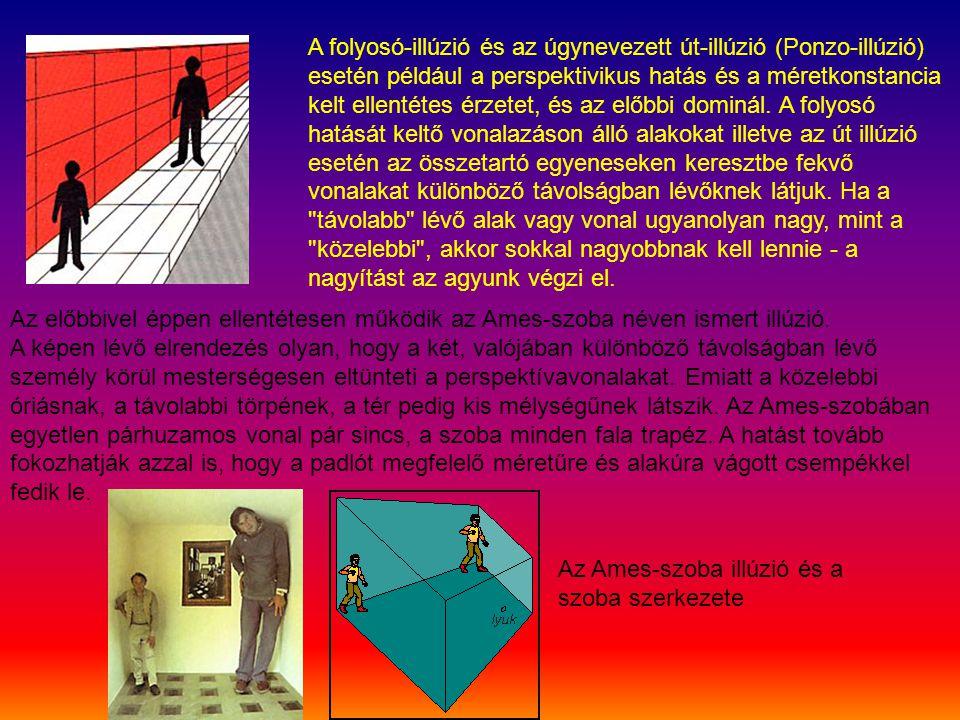 A folyosó-illúzió és az úgynevezett út-illúzió (Ponzo-illúzió) esetén például a perspektivikus hatás és a méretkonstancia kelt ellentétes érzetet, és