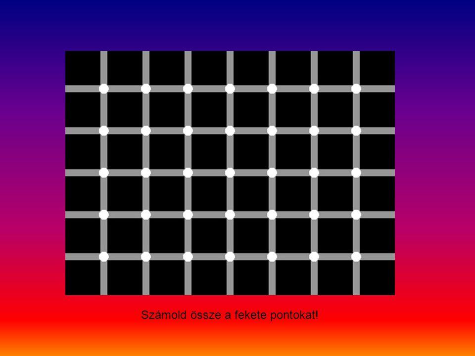 Számold össze a fekete pontokat!