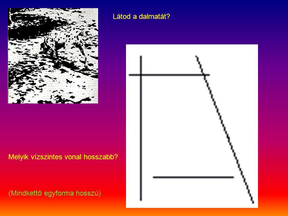 Mit látsz? Domború, vagy domború és süllyesztett pontokat?