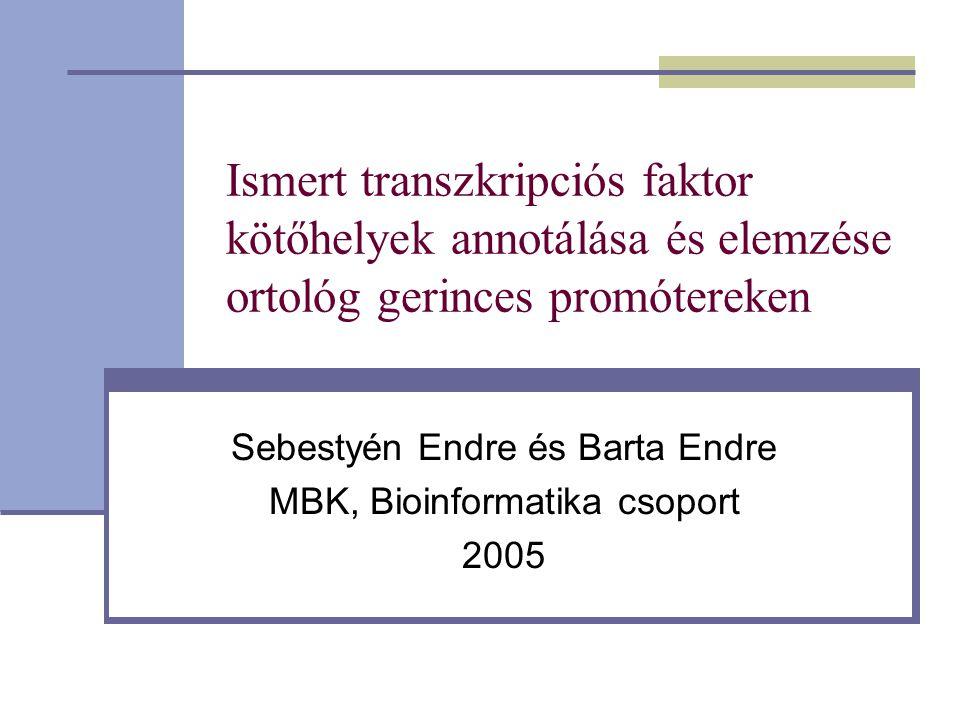 Ismert transzkripciós faktor kötőhelyek annotálása és elemzése ortológ gerinces promótereken Sebestyén Endre és Barta Endre MBK, Bioinformatika csoport 2005