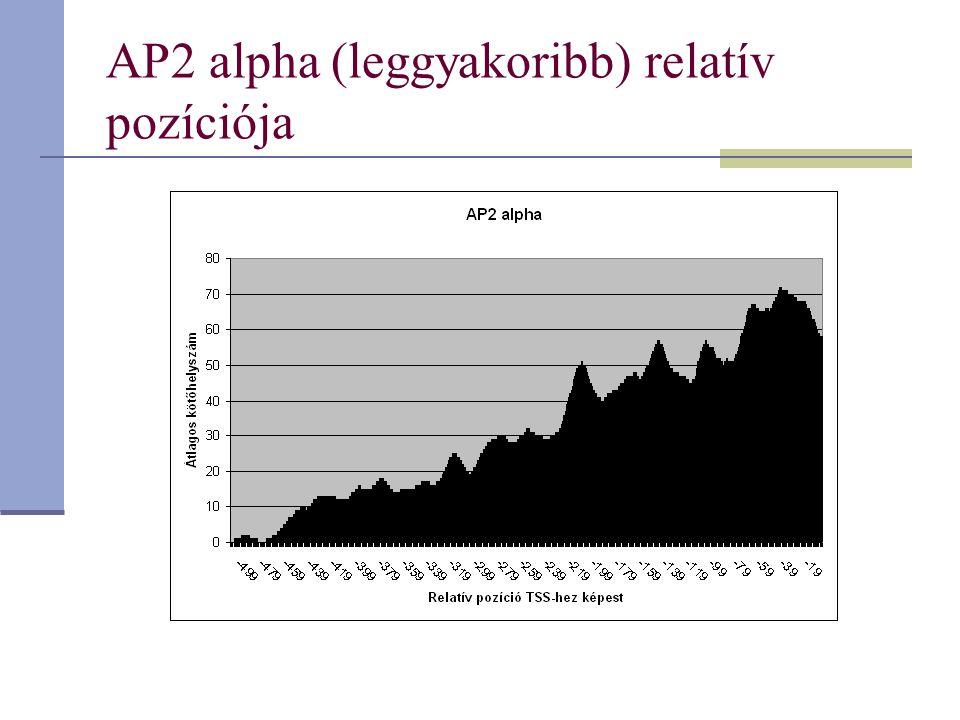 AP2 alpha (leggyakoribb) relatív pozíciója